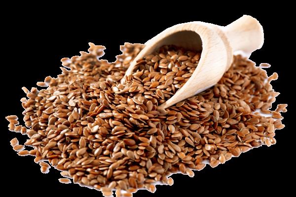 семена-льна2